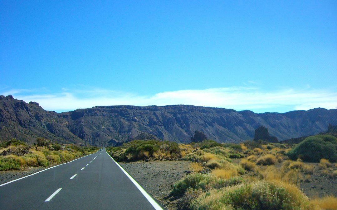 El Cabildo licita por 9,8 millones la mejora de las zonas verdes de carreteras