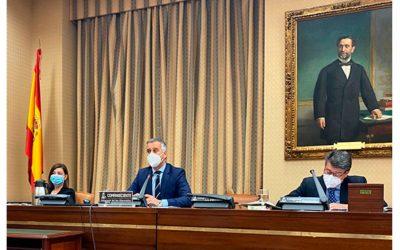 CNAE defiende en el Congreso los módulos obligatorios y presenciales de concienciación vial